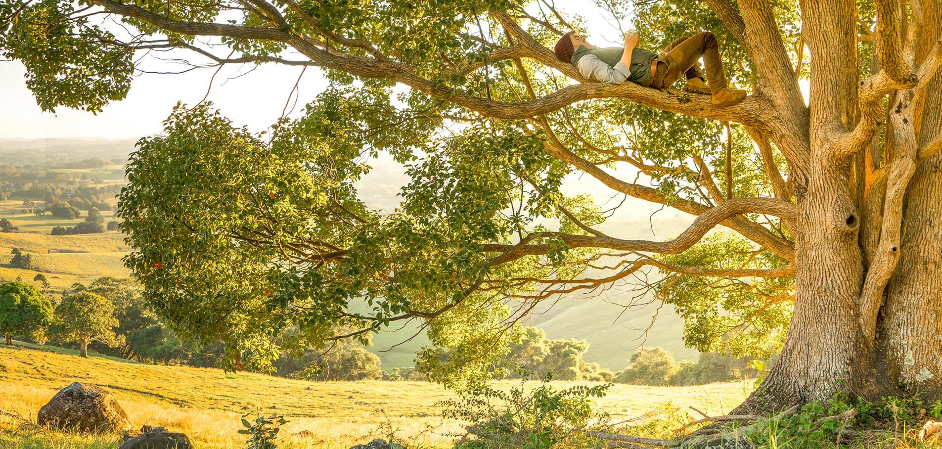Keindahan Alam Nusantara
